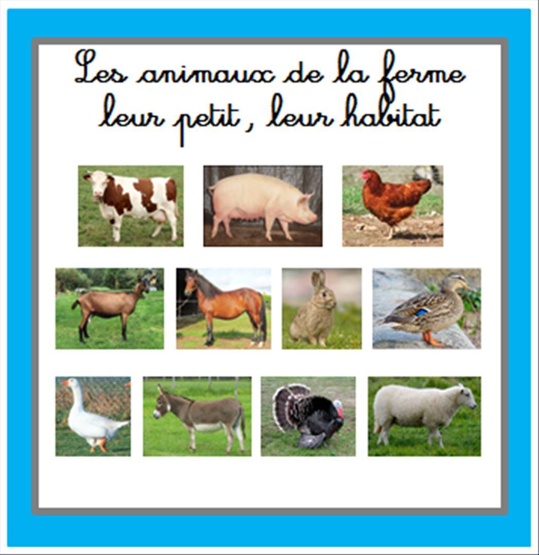 Complet Construction d'un livre sur les animaux de la ferme en maternelle RK49